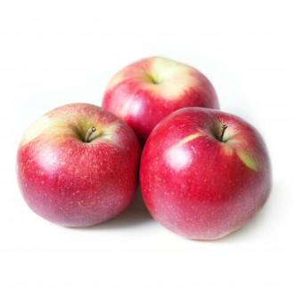 Jabłko BIO (Odmiana: Idared) 1kg
